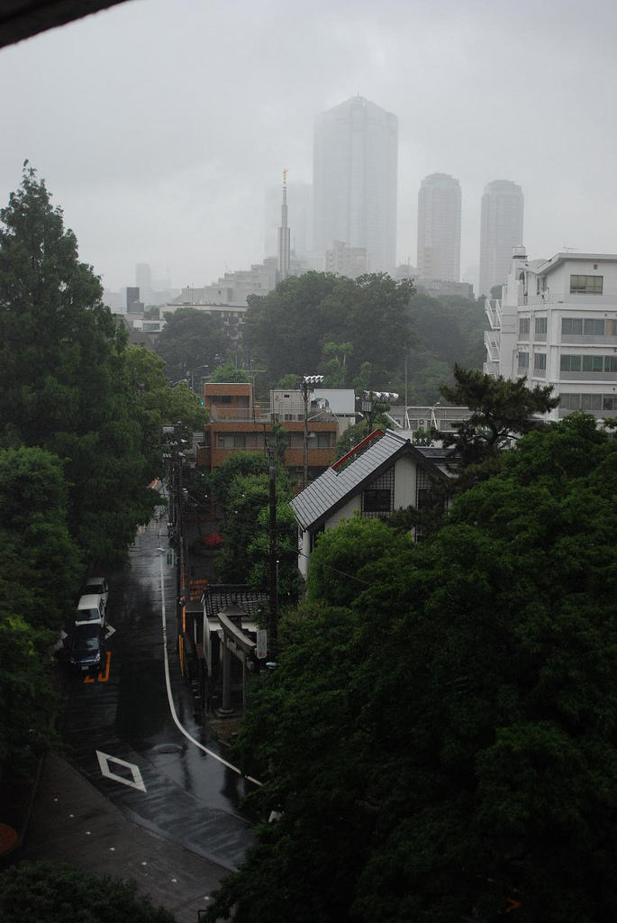 Foggy Neighbourhood with Greenery ITCHBAN.com
