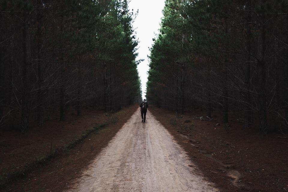 BELANLGO STATE FOREST ITCHBAN.com 012.jpg