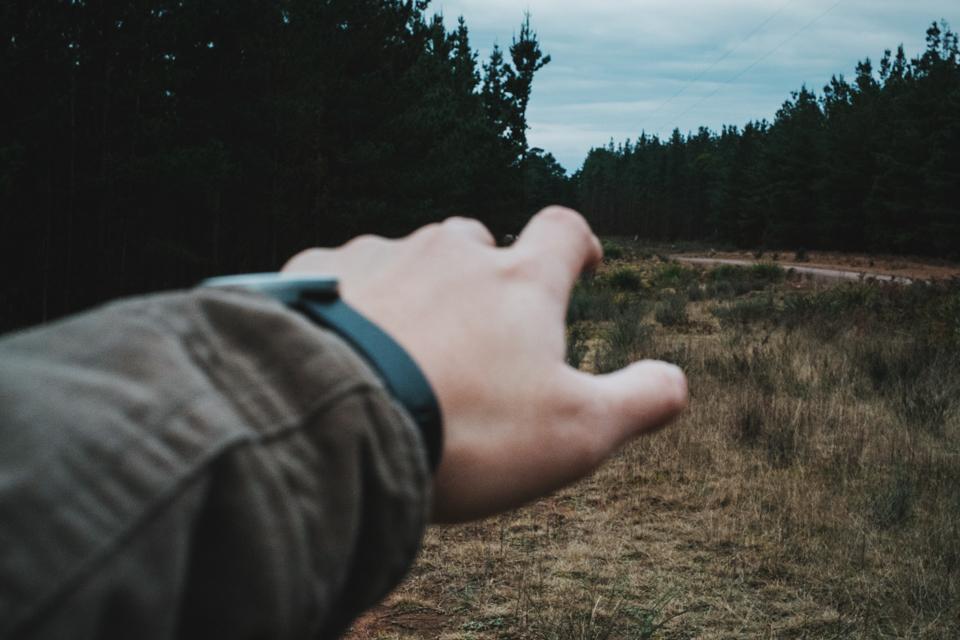 BELANLGO STATE FOREST ITCHBAN.com 003.jpg