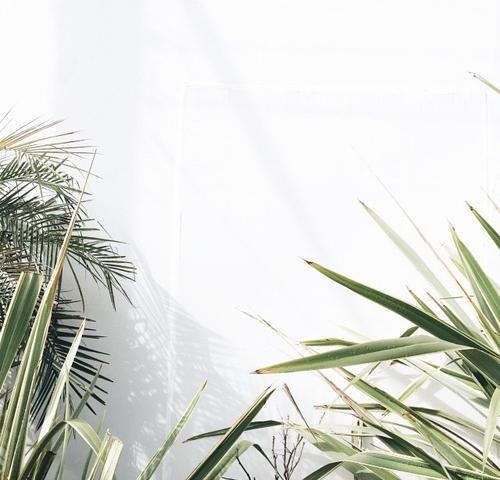 Visual Inspirations 016 4632016  ITCHBAN.com.jpg