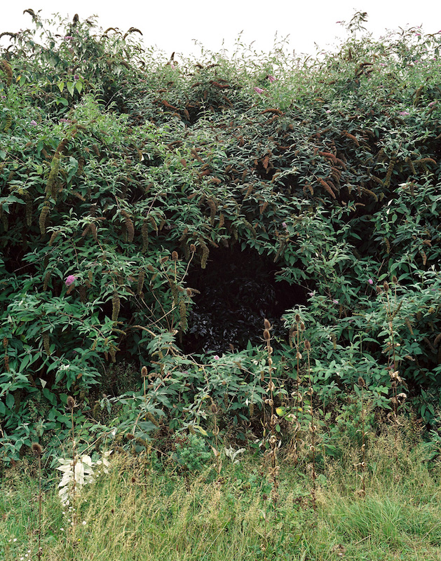 the_black_hole_14.jpg