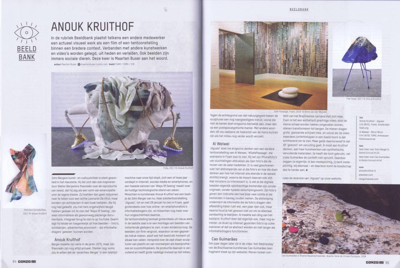 Gonzo Circus Beeldbank, article in print by Maarten Buser