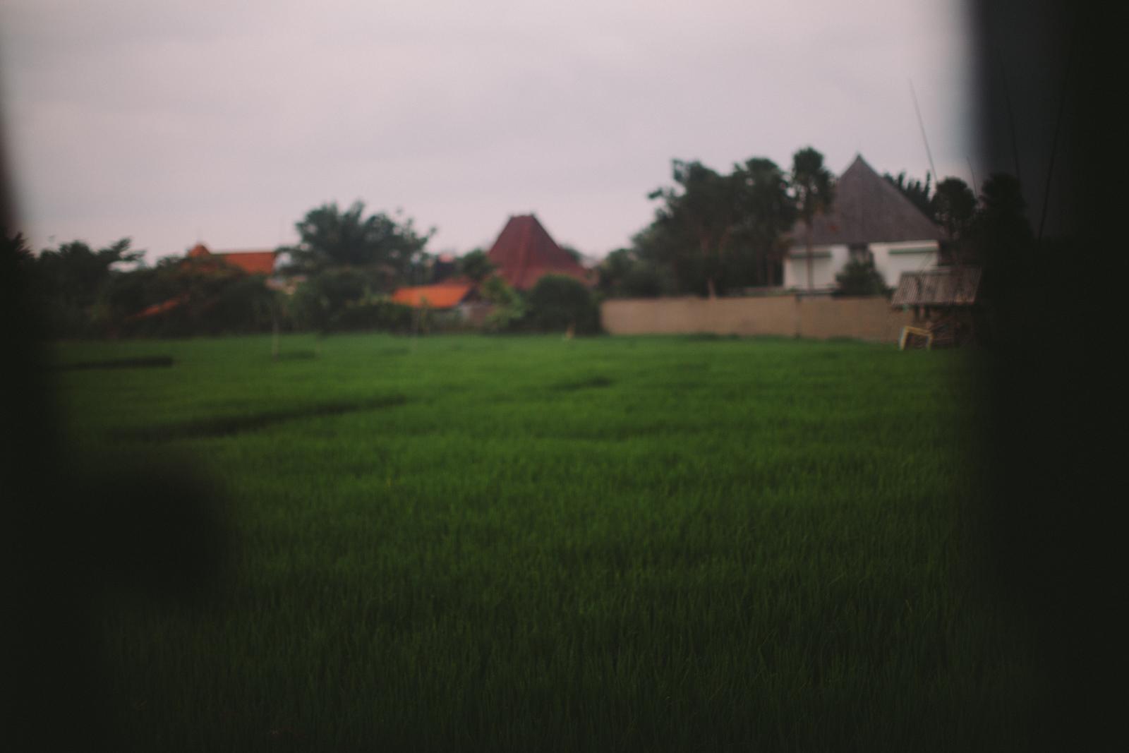 Bali Aug 15-Dean Raphael-10.jpg