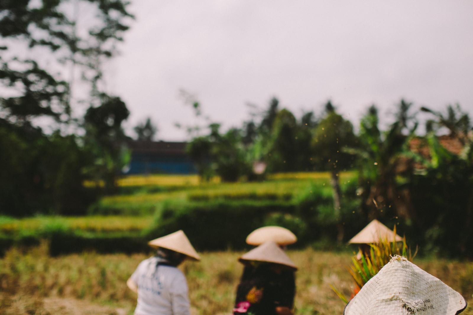 Bali Aug 15-Dean Raphael-25.jpg