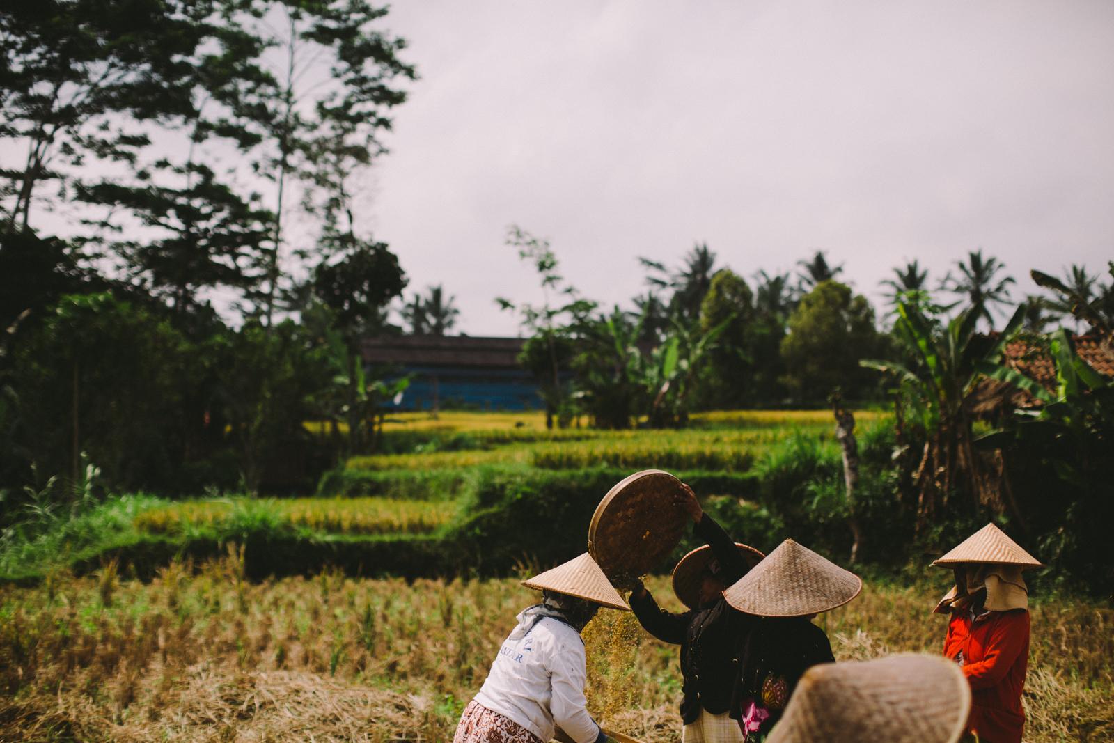 Bali Aug 15-Dean Raphael-24.jpg