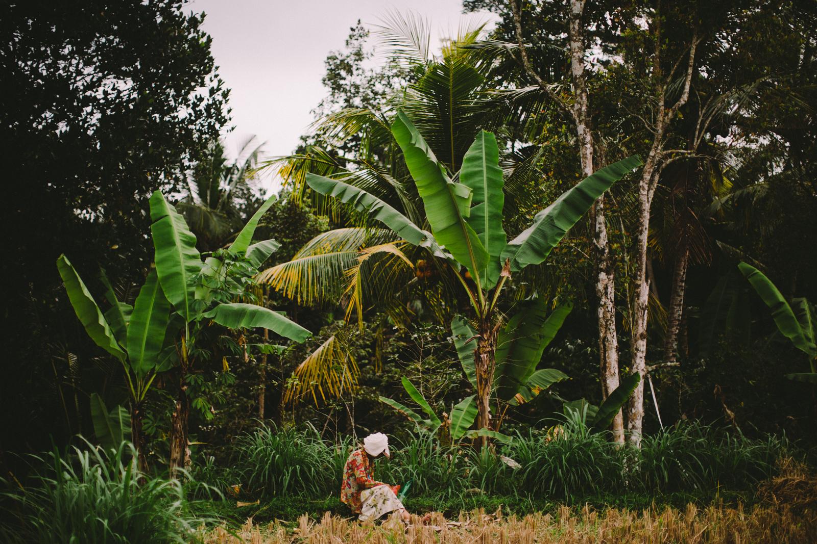 Bali Aug 15-Dean Raphael-26.jpg