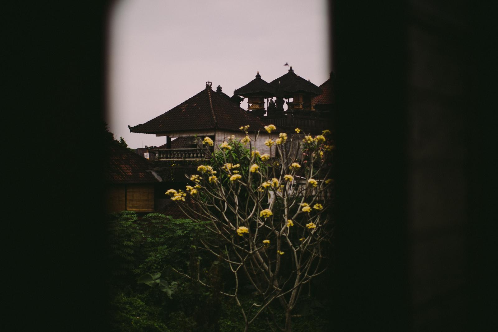 Bali Aug 15-Dean Raphael-31.jpg