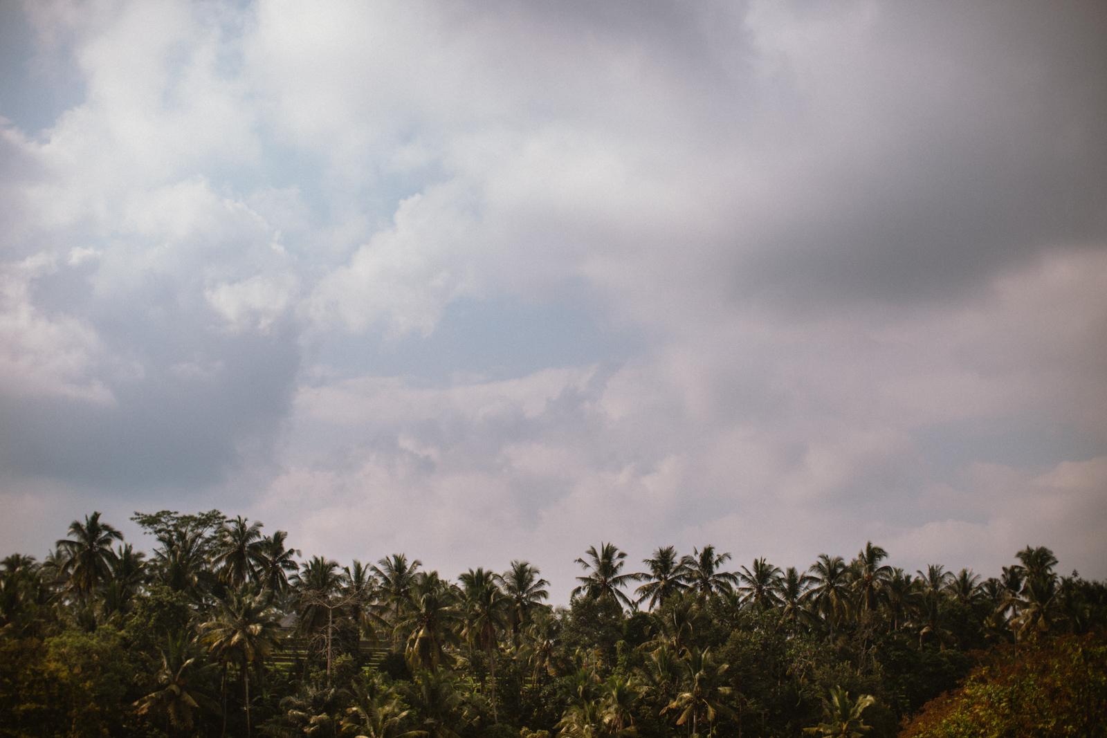 Bali Aug 15-Dean Raphael-34.jpg
