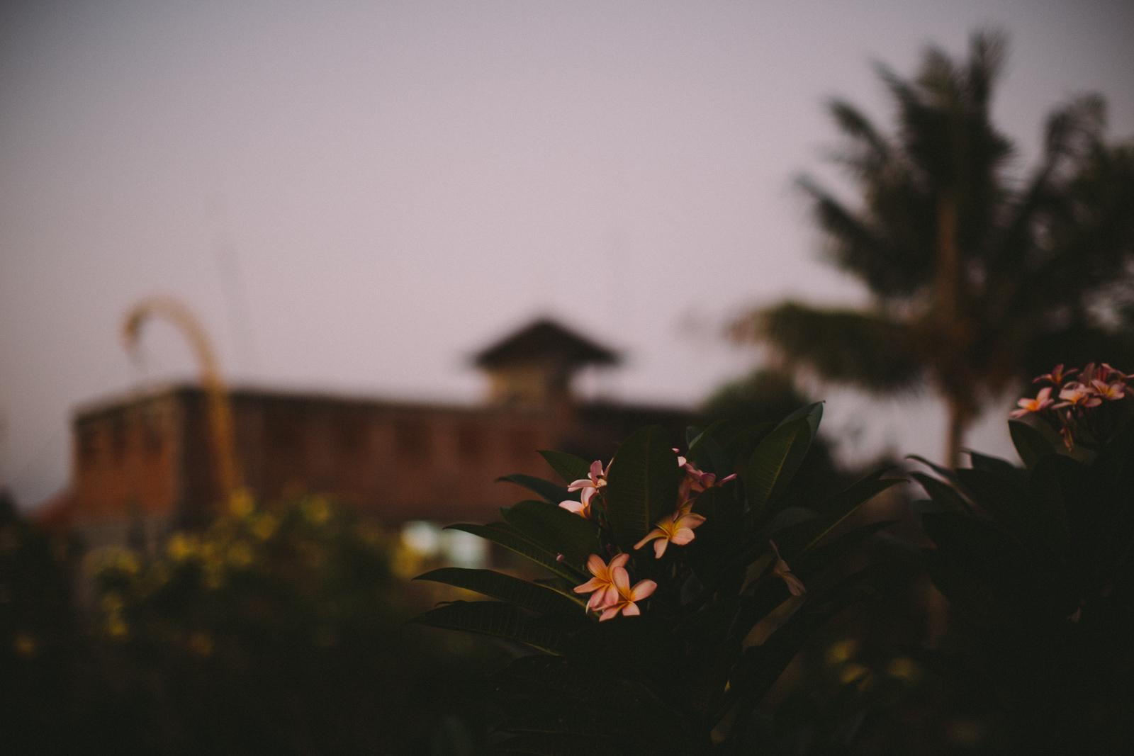 Bali Aug 15-Dean Raphael-48.jpg