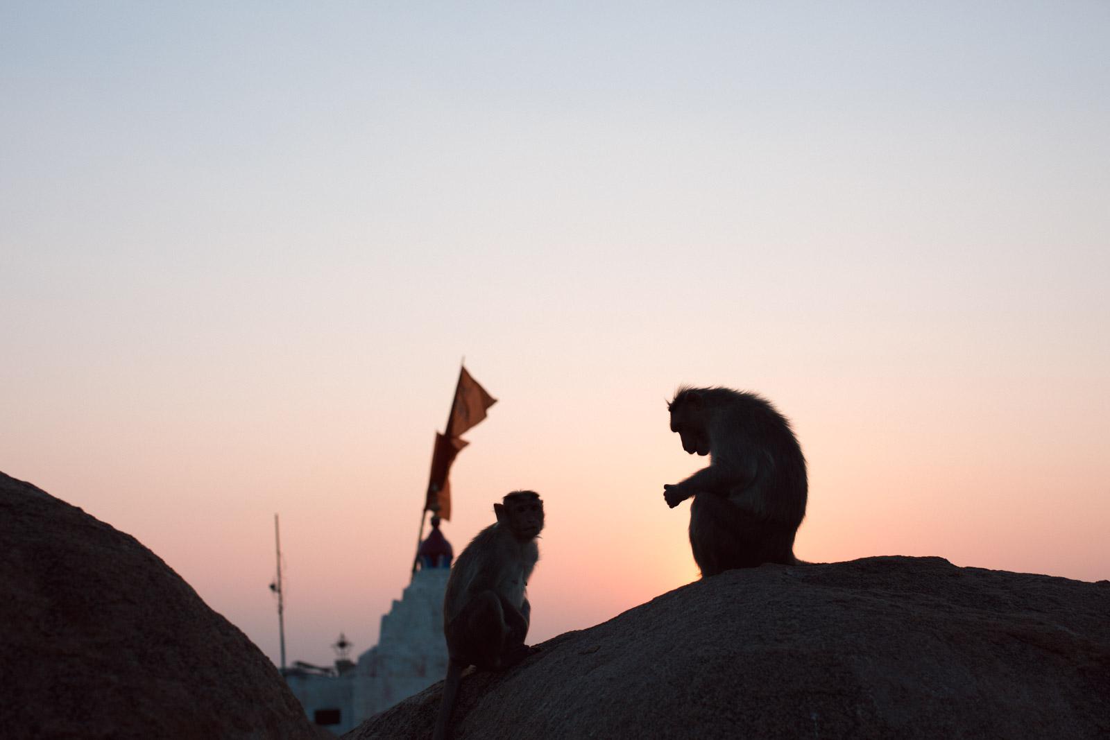 Yoga Photographer-India-Dean Raphael-9.jpg