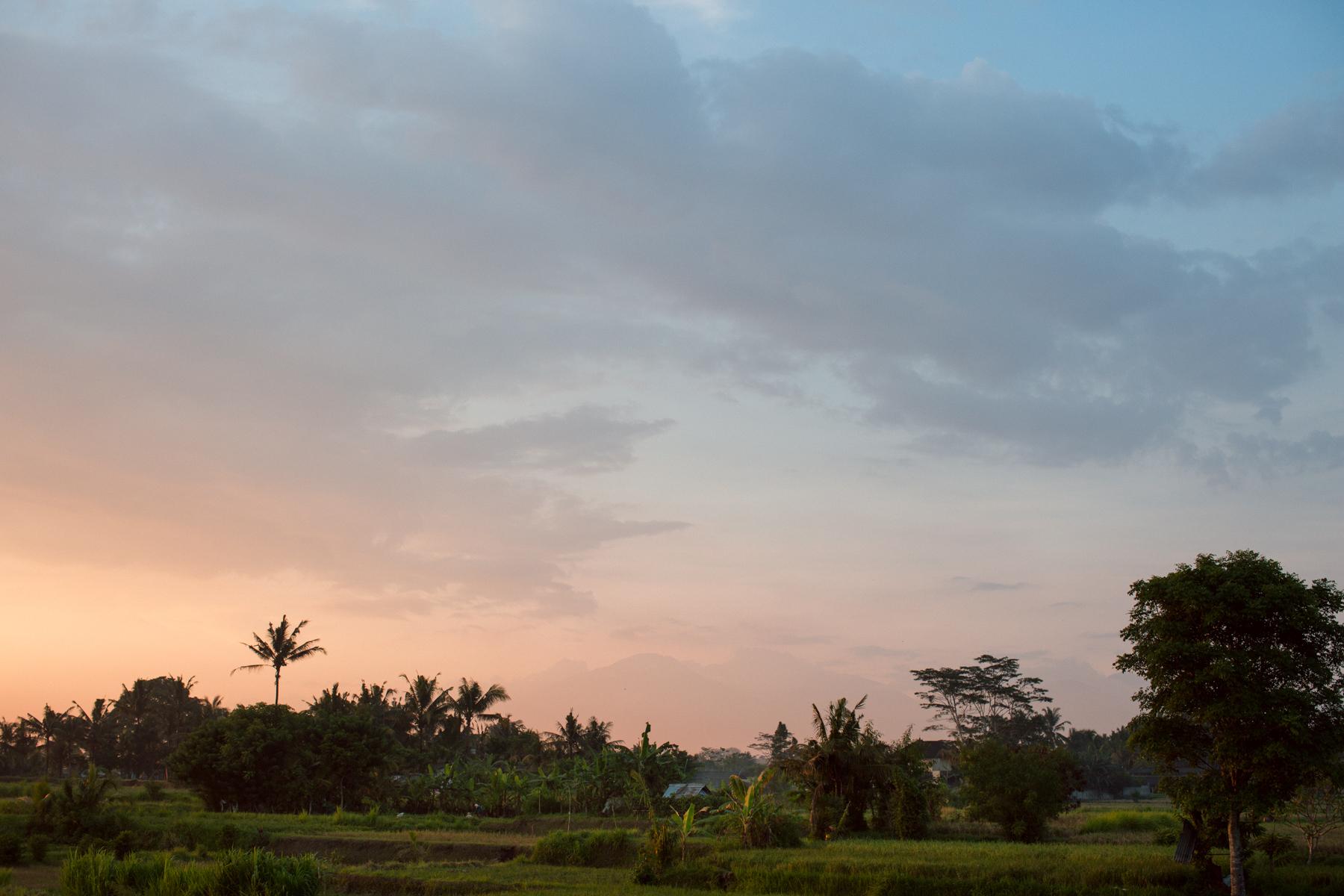 Ubud Bali 2017-Dean Raphael-4.jpg