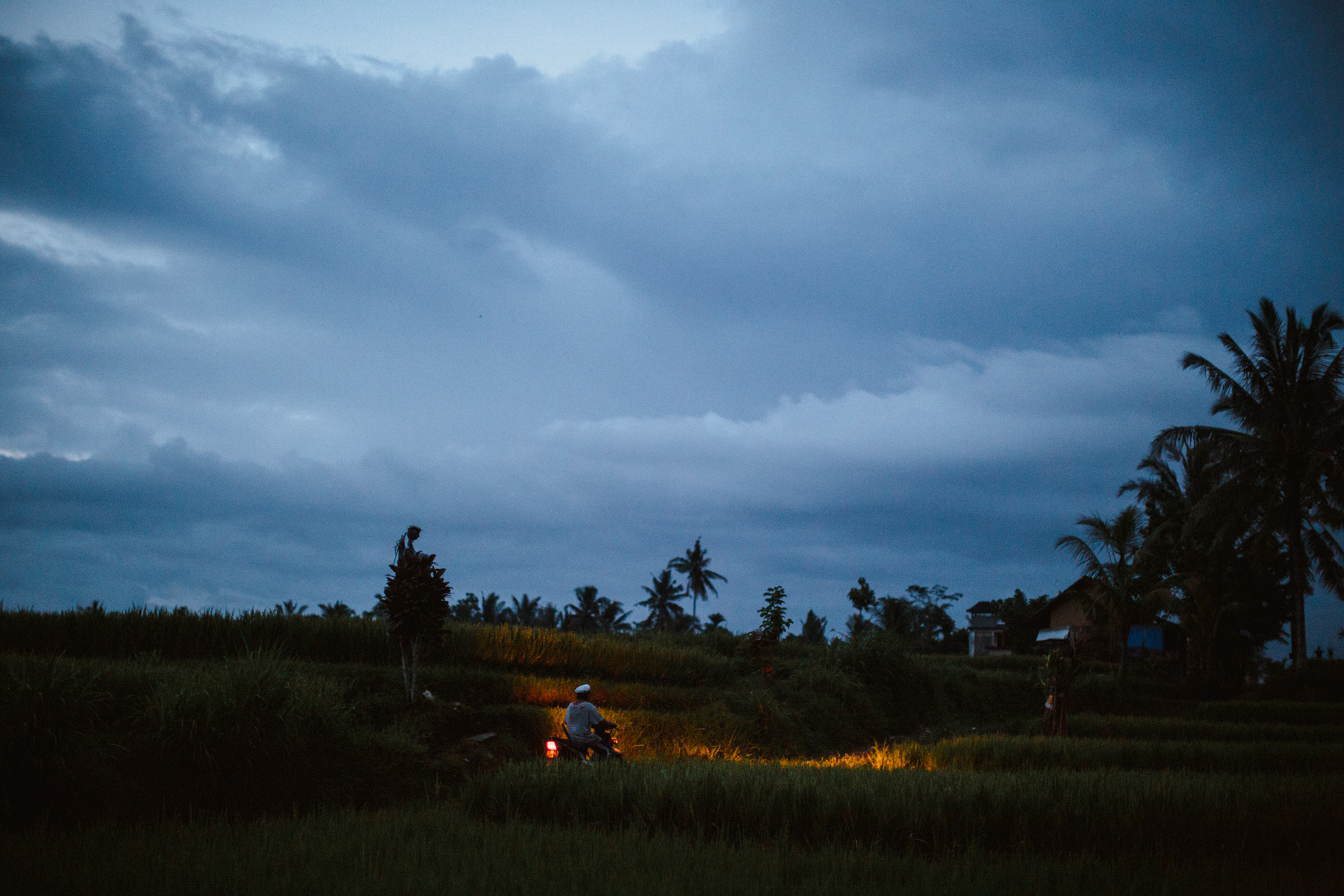 Ubud Bali 2017-Dean Raphael-61.jpg