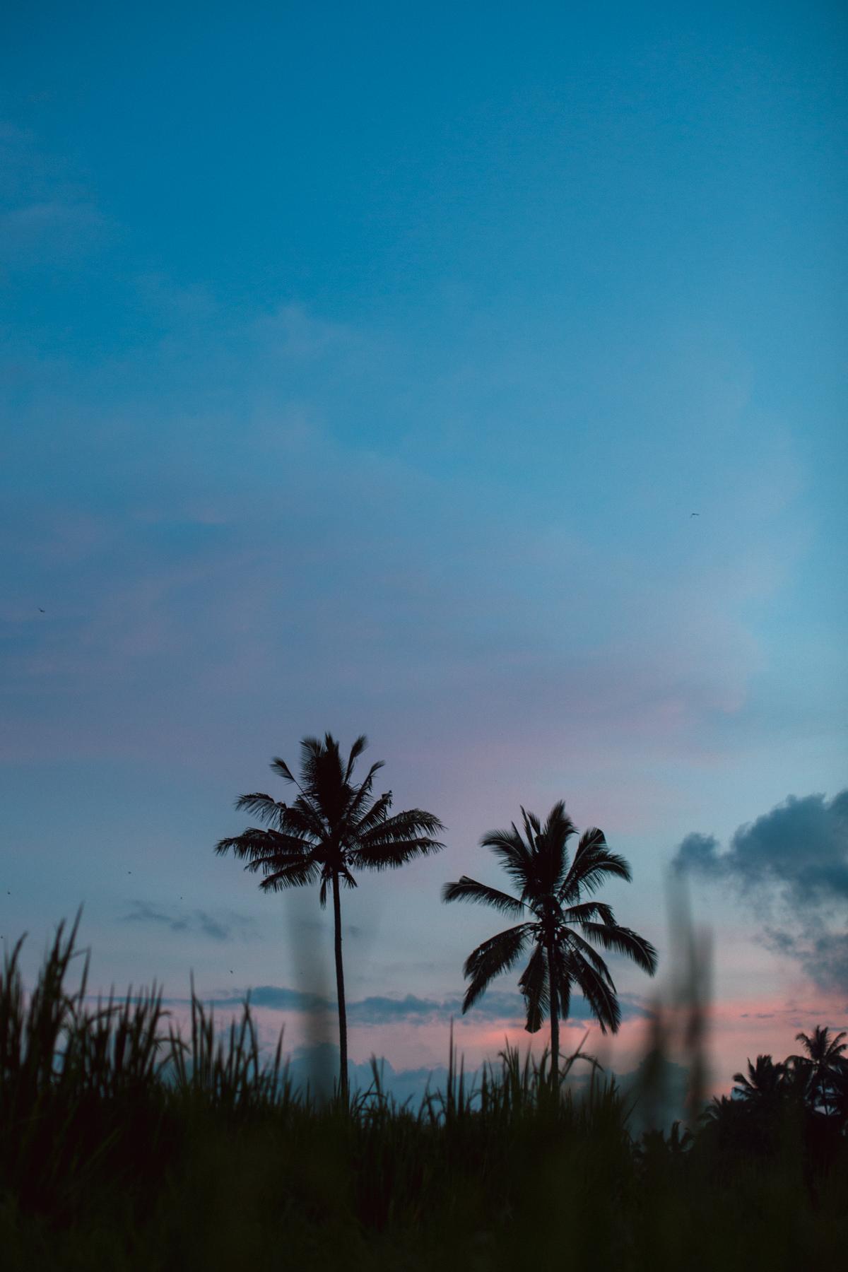 Ubud Bali 2017-Dean Raphael-98.jpg