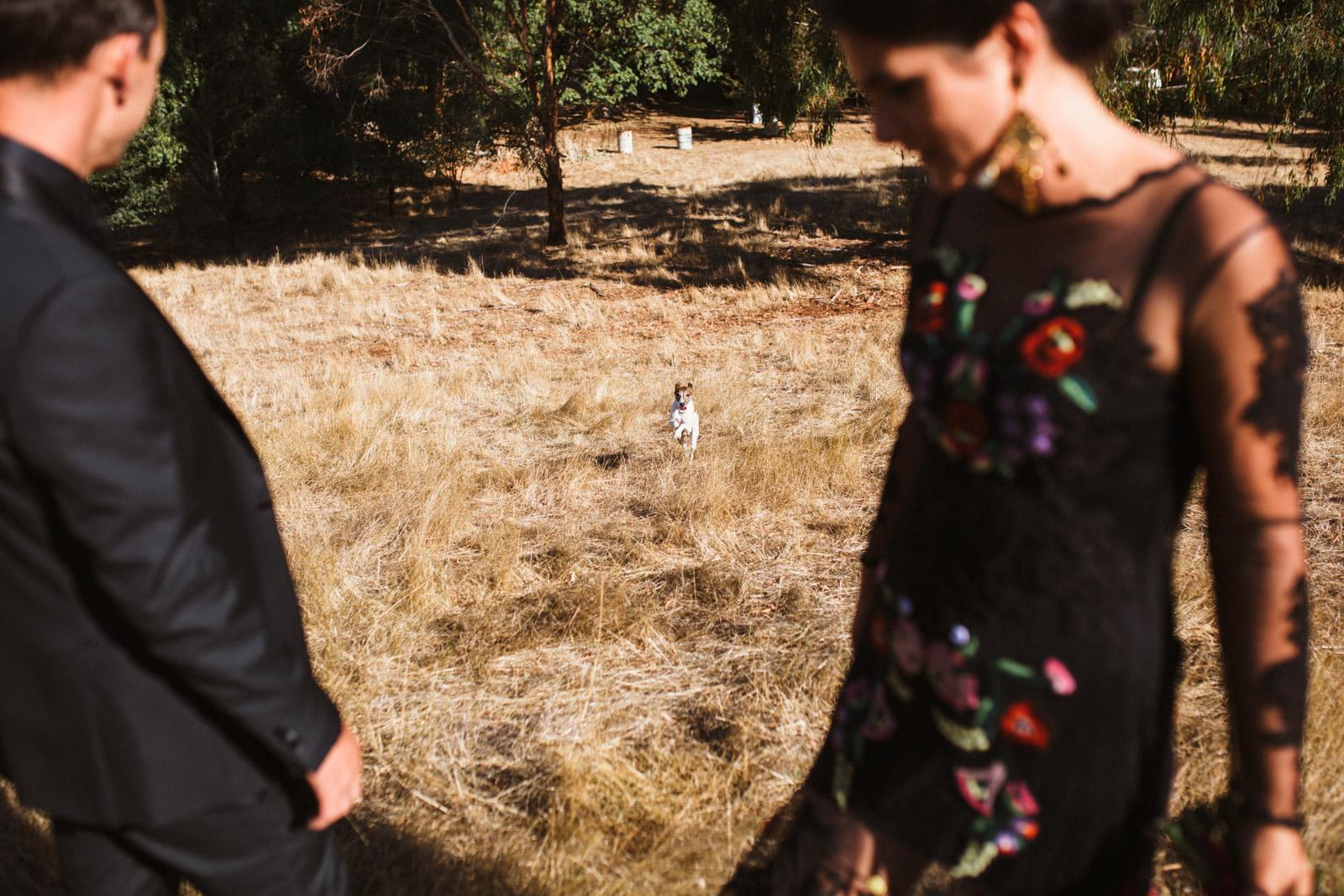 ZD-Melbourne Wedding Photographer-Dean Raphael-59.jpg