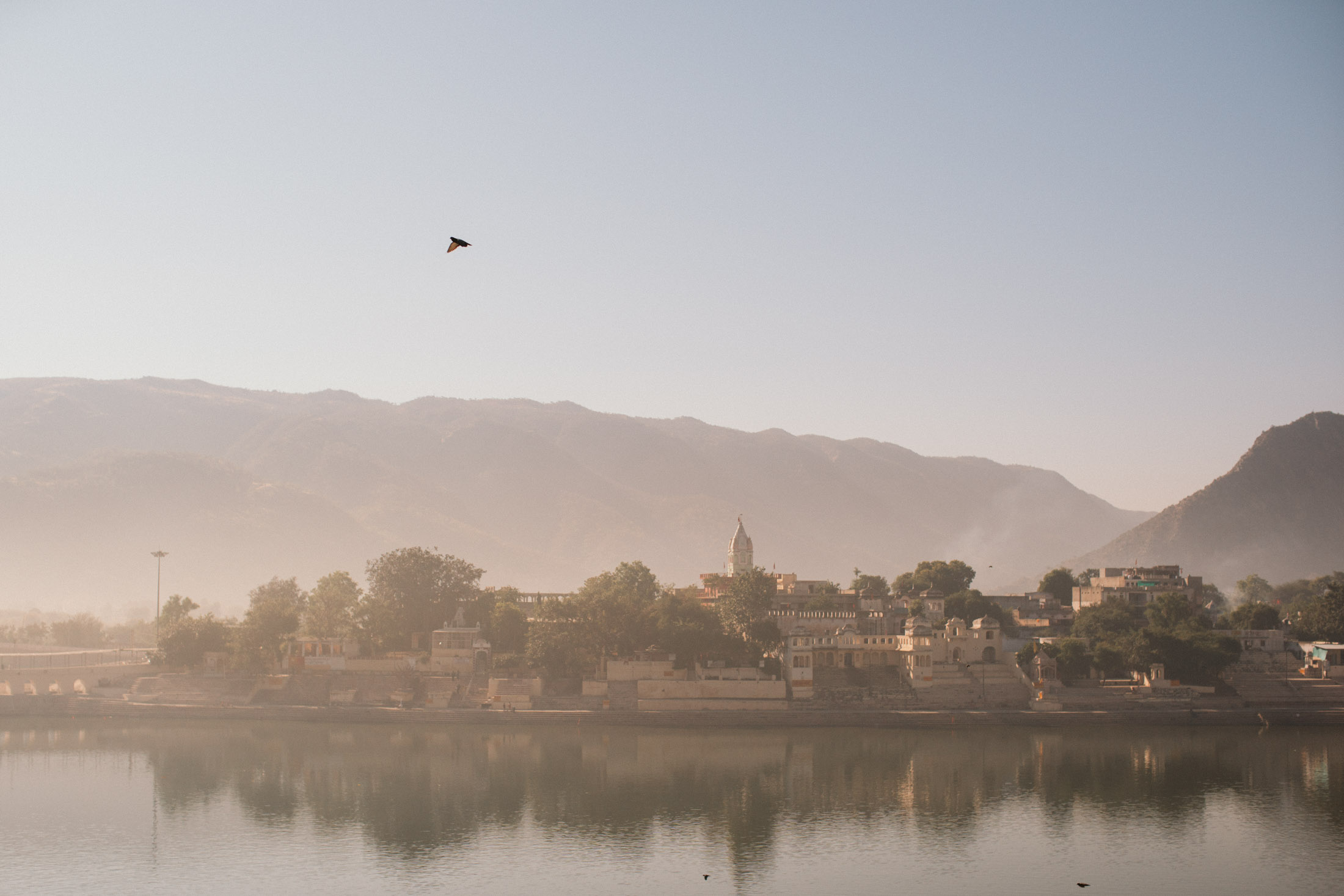 Pushkar Nov 2017-Dean Raphael Photography-117.jpg