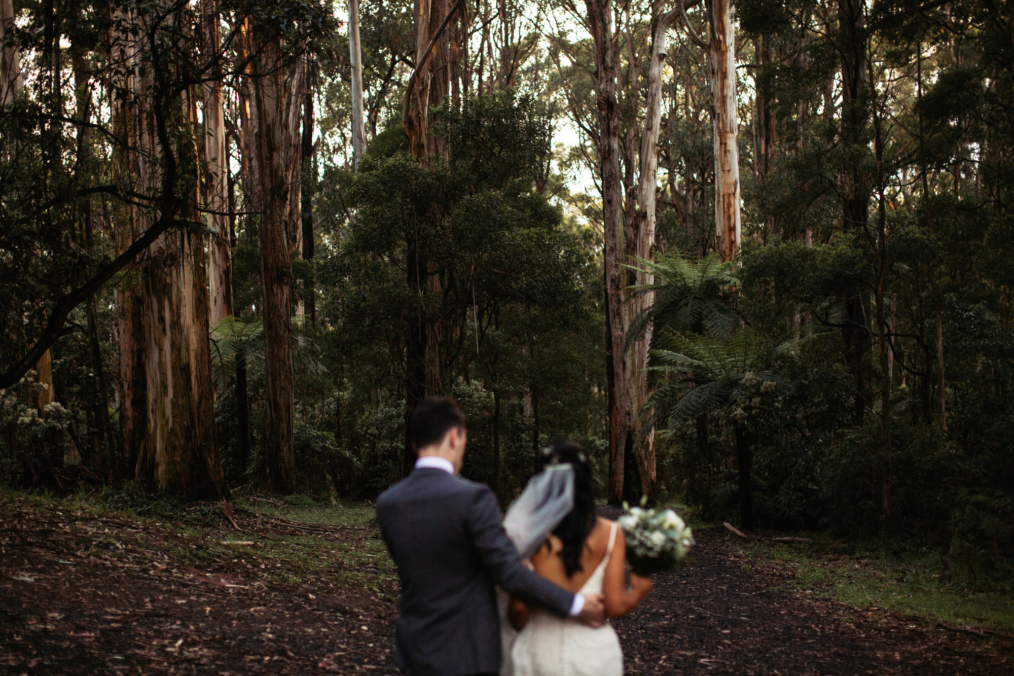 RR-Lyrebird Falls Wedding-Dean Raphael Melbourne Wedding Photographer-125.jpg