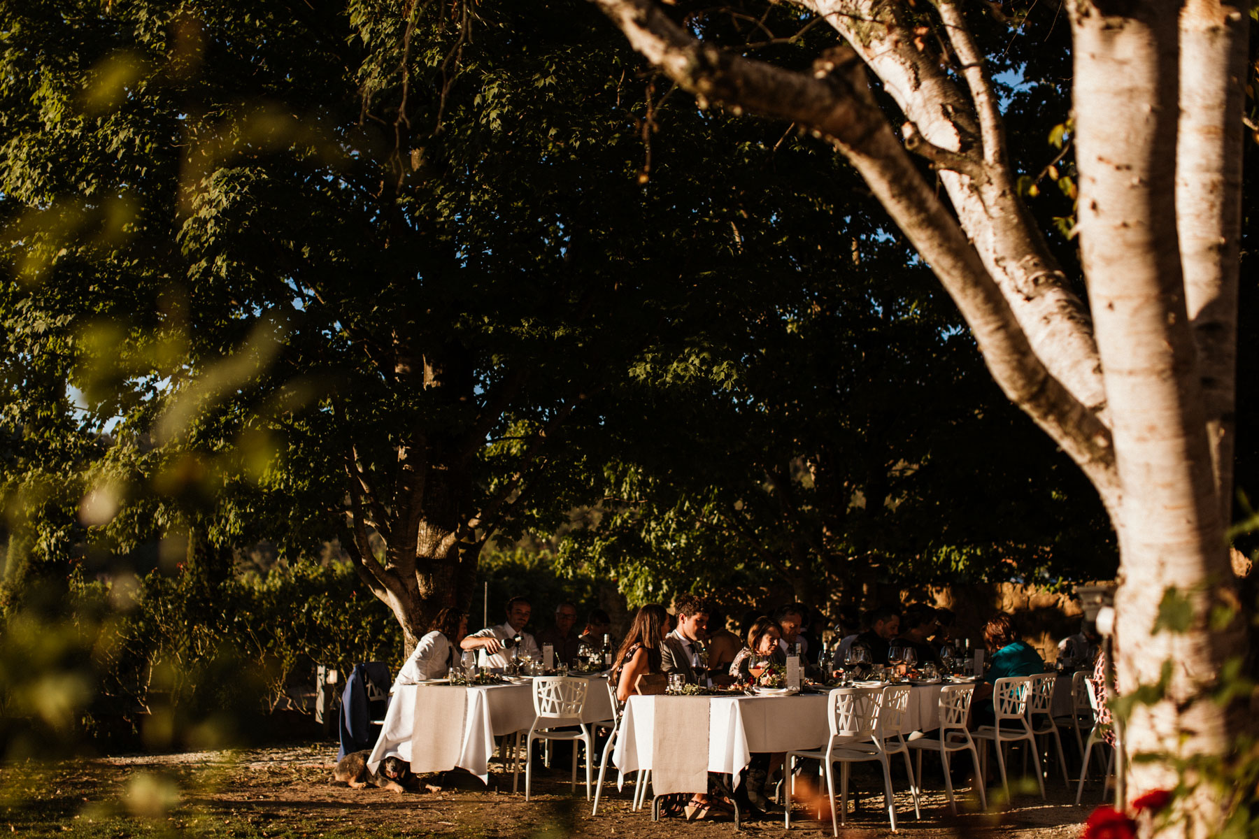 KJ Featherop Winery Wedding Bright-Dean Raphael Weddings-138.jpg