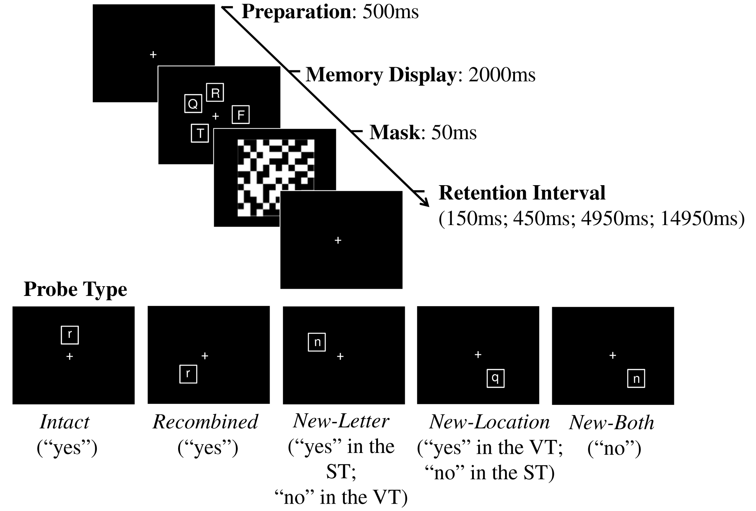 "Schematic illustration of trial types in the Verbal Task (VT) and the Spatial Task (ST), with corresponding correct responses. Participants were presented with an array of consonants in distinct locations. In the verbal task participants were instructed to remember the consonants. In the spatial task, they remembered the locations. Following a visual mask and a retention interval of variable duration, they were asked to judge a probe consonant and press a ""yes"" key if the probe represented one of the to-be-remembered consonants (verbal task) or locations (spatial task), and to press the ""no"" key otherwise."