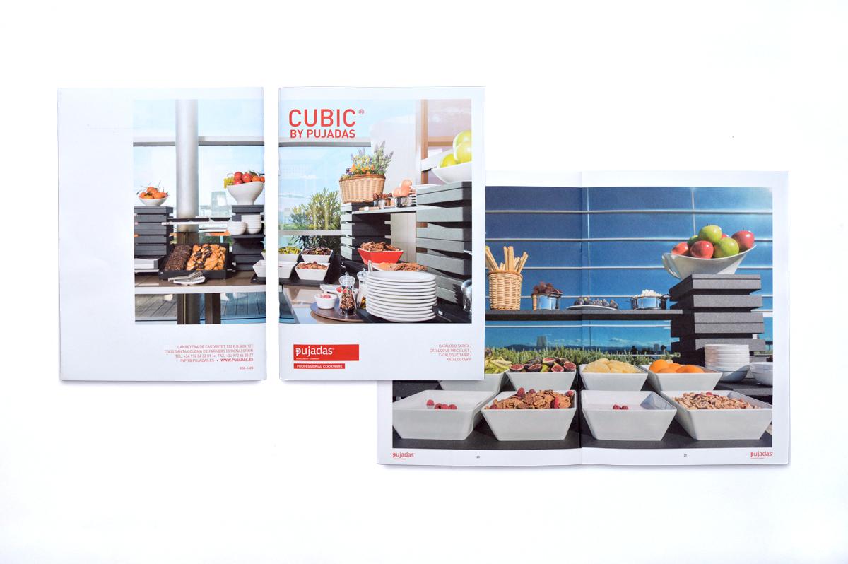 Pujadas-CUBIC.jpg