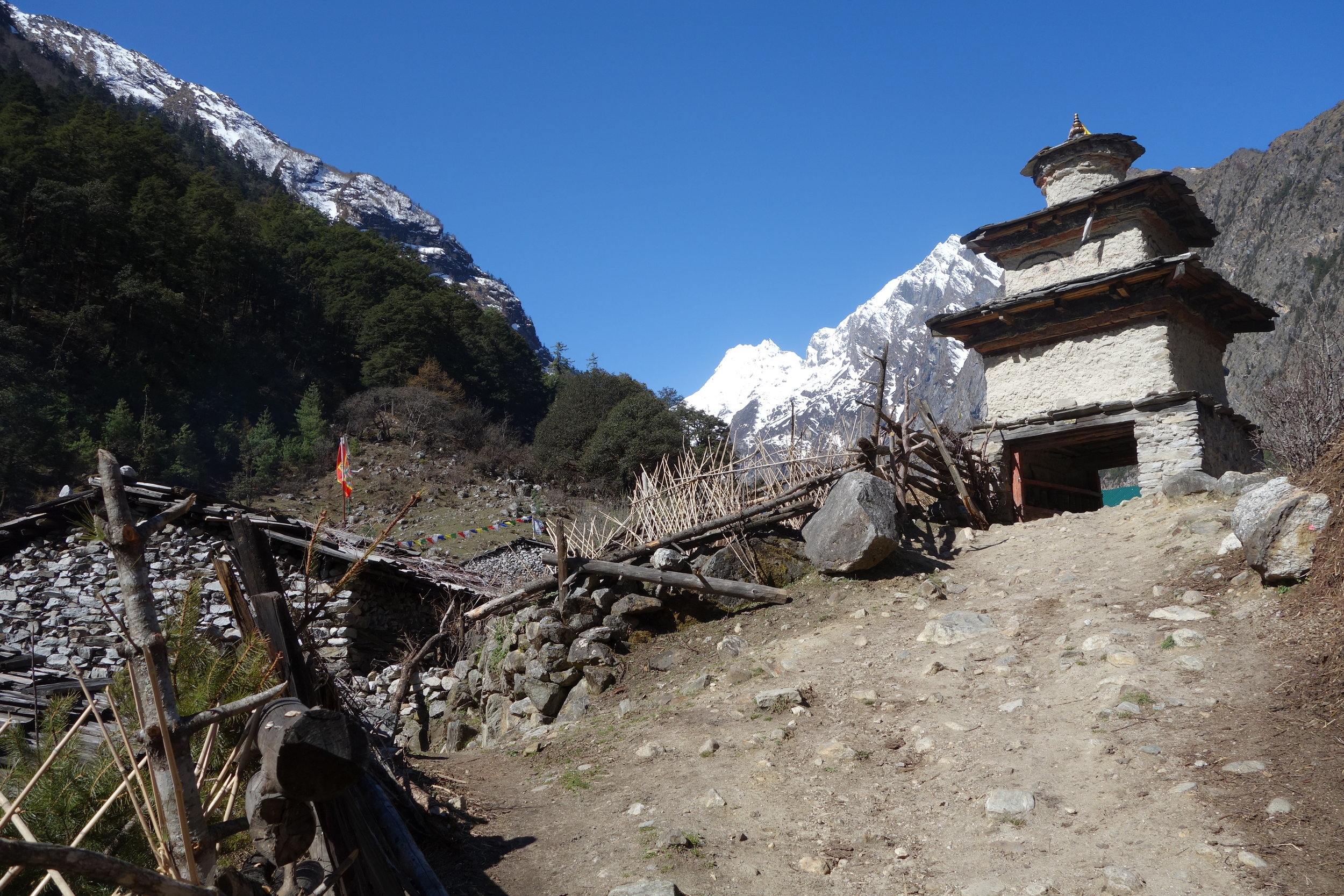 """Our trek started around 7:30, mostly on a track that is more hard packed earth and only some stairs.We cautiously crossed five snowy avalanches.There were still some steep climbs that I felt I was struggling with,and I tried the nasal breathing that KK advised was the best for oxygen intake but breathing in and out of my nose just initiated snot forming,so I kept stopping to blow. My body seemed to be overheating on the climbs so I put my poor performance down to not feeling too well.We made good time to Lho, arriving at 11:42,so a trek of only 4 hours 25 minutes with a morning tea break.The early arrival gave us time to wash our clothes, have a hot shower (200 rupee)including a hair wash. The afternoon was sunny but a cold breeze cut to the bone.The room was like a wind tunnel.  Nev , Jo and Greg climbed up to a Buddhist monastery. It was high on the hillside and I decided to stay back to rest.When we arrived there was a community meeting of locals underway. There were many people sitting outside with a spectacular view over the valley and the mountains beyond. Their discussions continued to around 5:30 by which time it was bitterly cold.There were lots of raised voices at one point,and everyone standing and yelling, and a bit of argy bargy.I can't believe how cold it is!I have fleece pants covering my legs and my body is layered with merino chamisole,tshirt and sweater, a down jacket and head topped with a hat.At least it has been sunny and warm while trekking.KK tells us there is bad news about the pass, because of recent snow. Evidently Samarkand to Samdo is 2 feet deep with snow.Time will tell.Rained heavily in the night, woke 10:15 thinking it must be around 4am as disparate to go to toilet, had to go out in pelting rain. Fresh snow down quite low. Villages have little children greeting """"Namaste chocolate"""",""""Namaste balloon""""with palm outstretched we have nothing for them. Most have running noses and cheeks skin thick and red as in wind burn."""