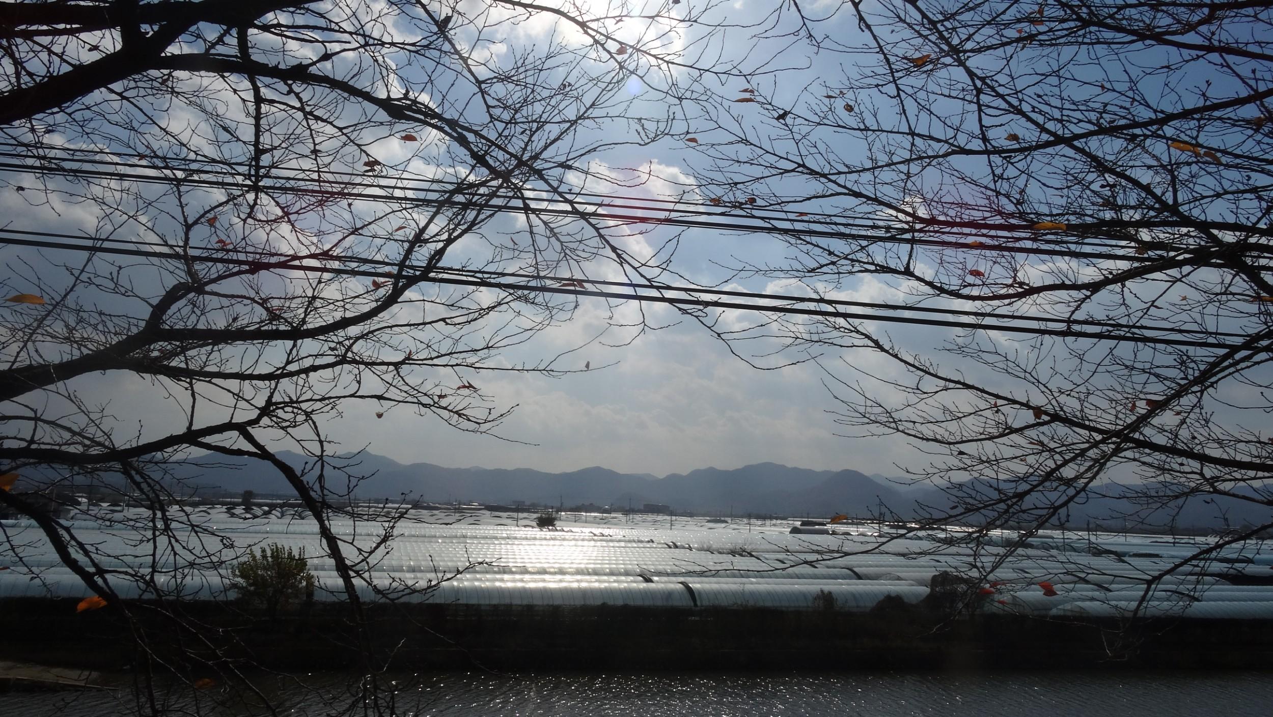 sceneDSC05462.JPG