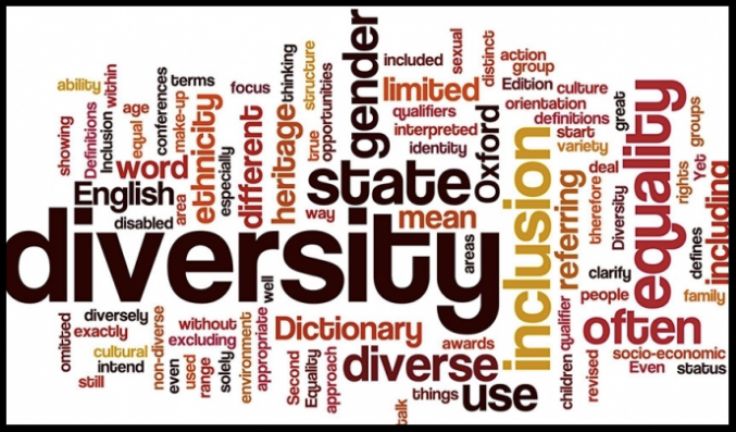 Division of Diversity & Inclusion -