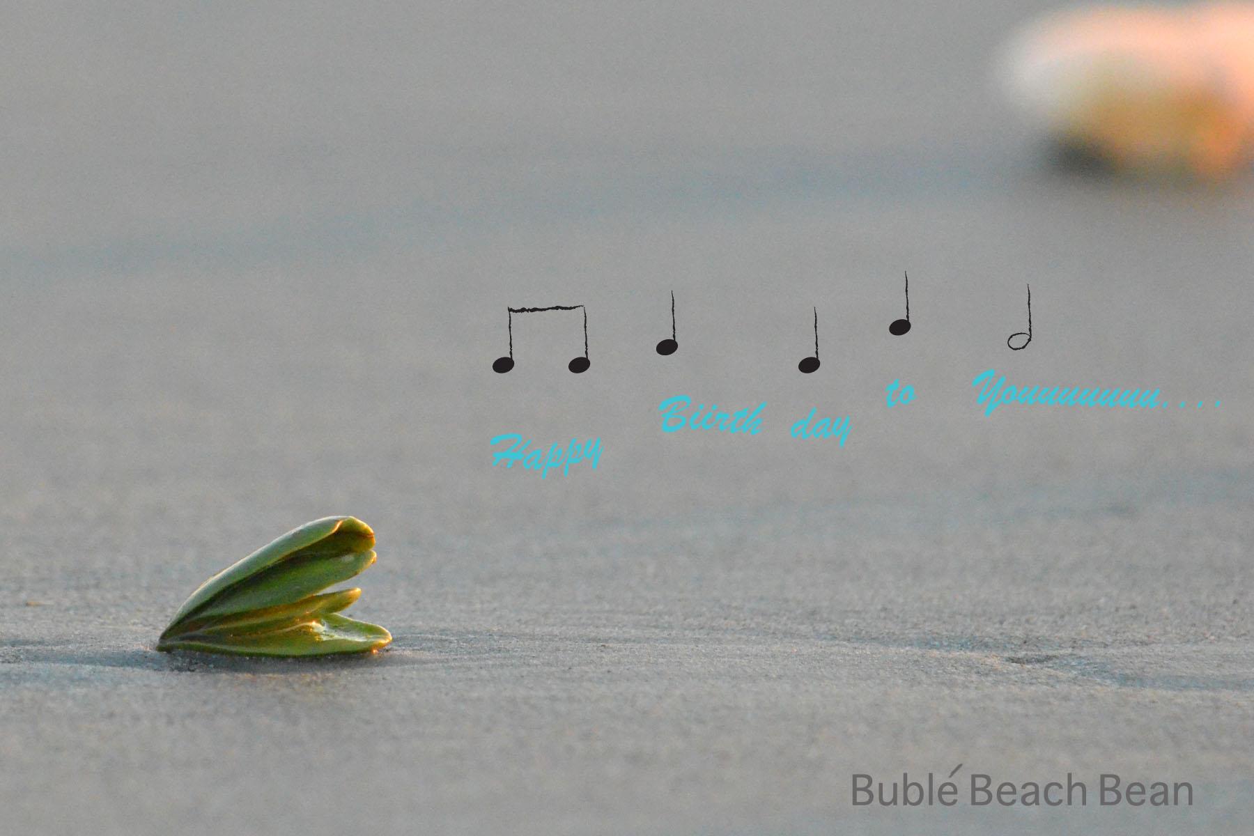 Bublebeachbean.jpg
