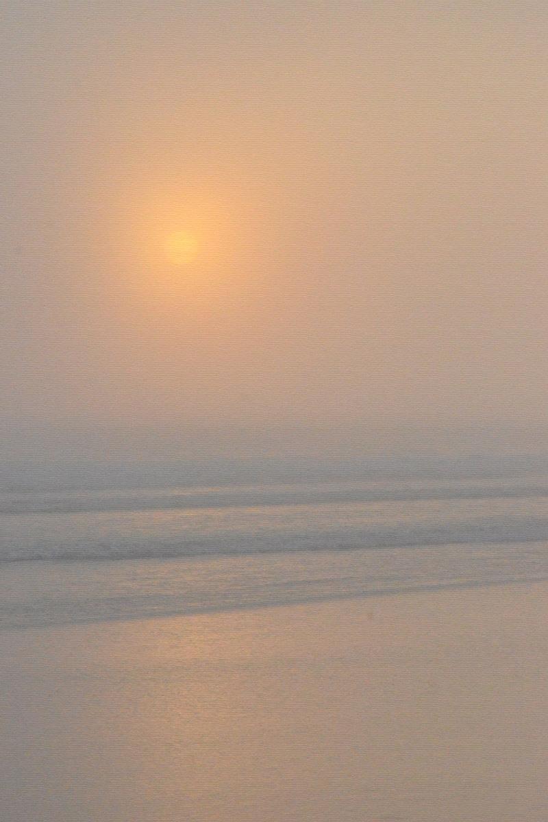fog32 copy.jpg