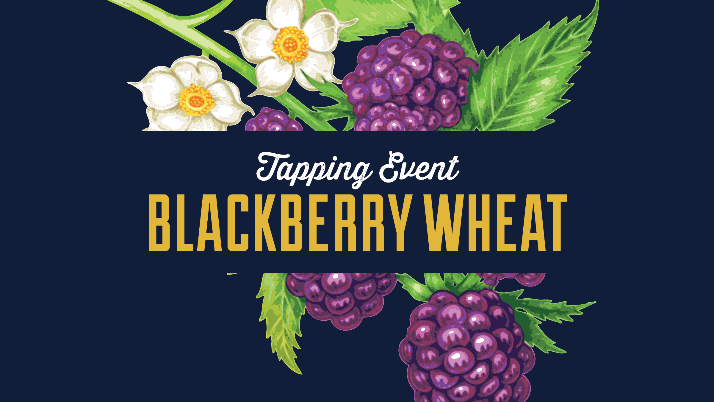 After it's winter hibernation, Blackberry Wheat is returning to the taproom! Bursting with flavors of fresh berries straight from the vine, we use over 200 pounds of Oregon Marionberries per batch to craft this best selling beer that's only available in our Bloomington taproom!