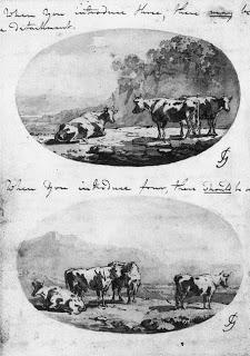 cowcomparison.jpg