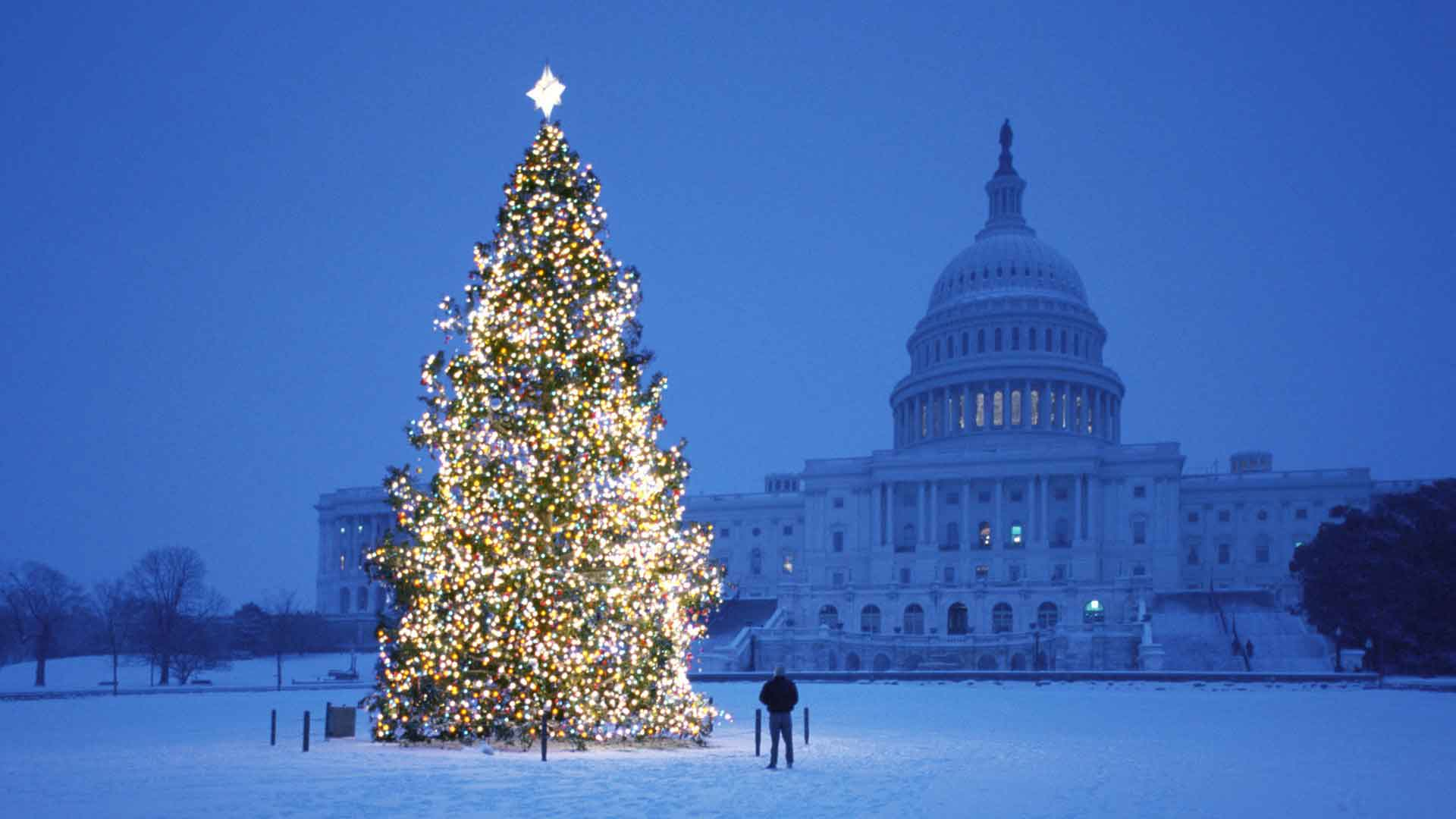 Happy holidays from Congress.