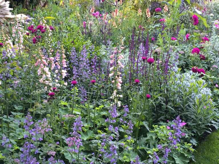 Perennials_lowres.jpg