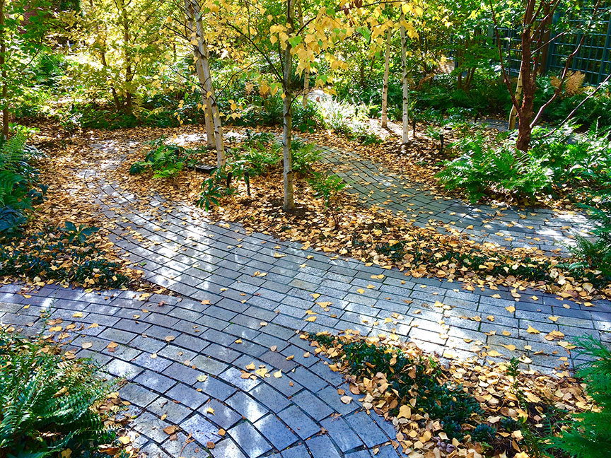 The Monks Garden at the Isabella Stewart Gardner Museum is a sustainable garden which evokes the northeast landscape. Here photographed in early autumn.