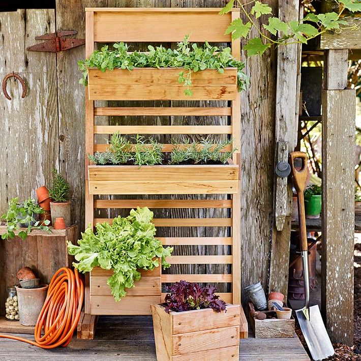 Simple DIY vertical planter systems are commonly built at home.