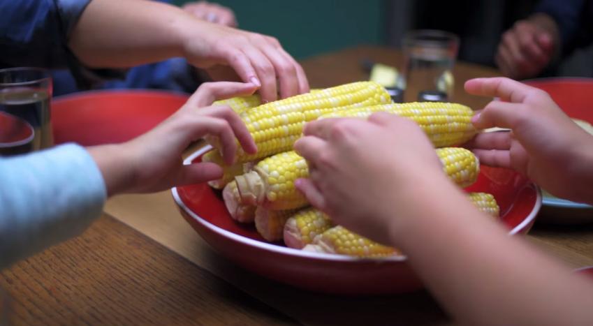Corn   Summer Memories