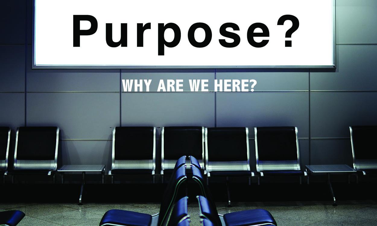 purpose-web-thumbnail