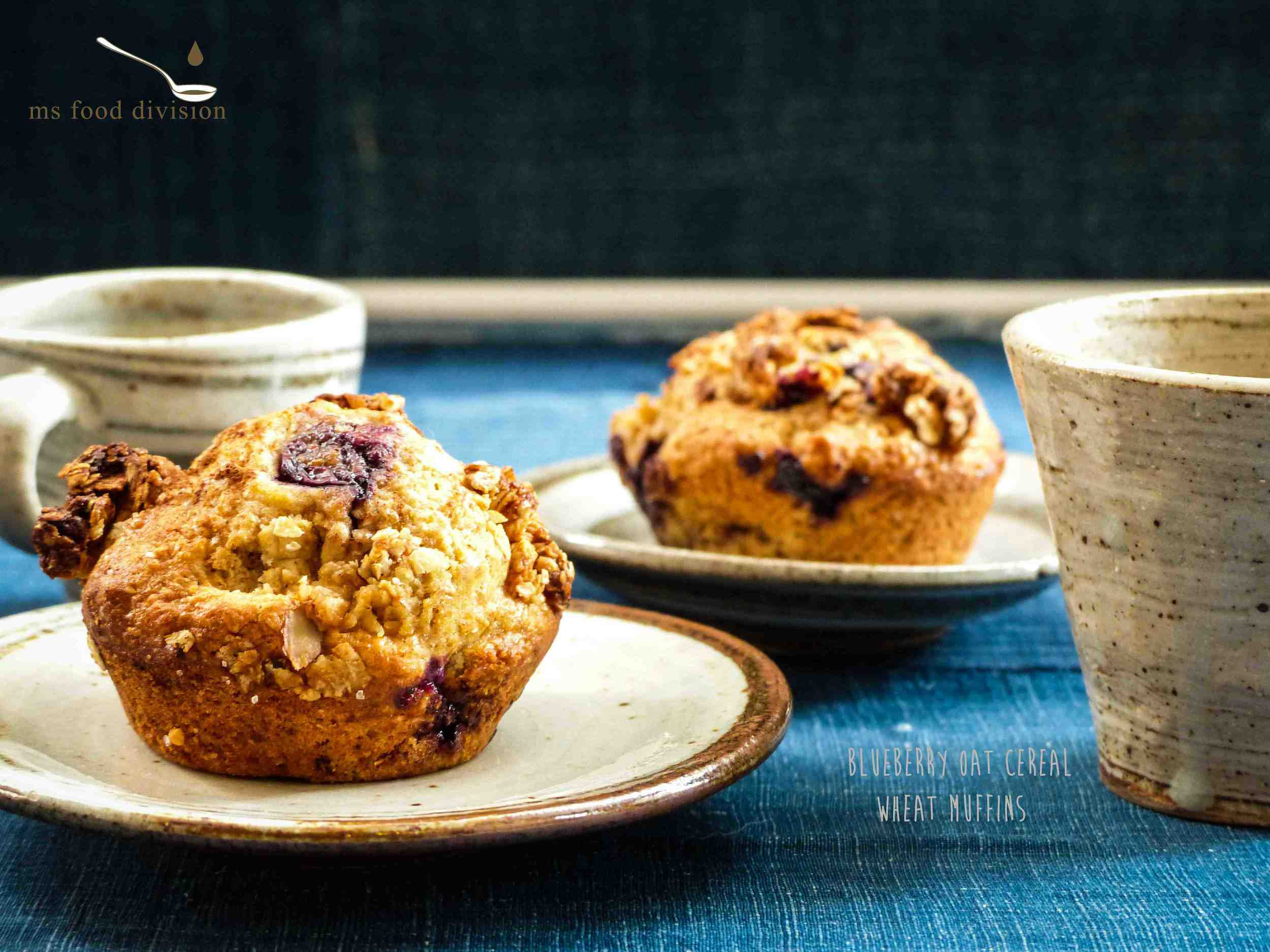 blueberry oat muffins-1.jpg
