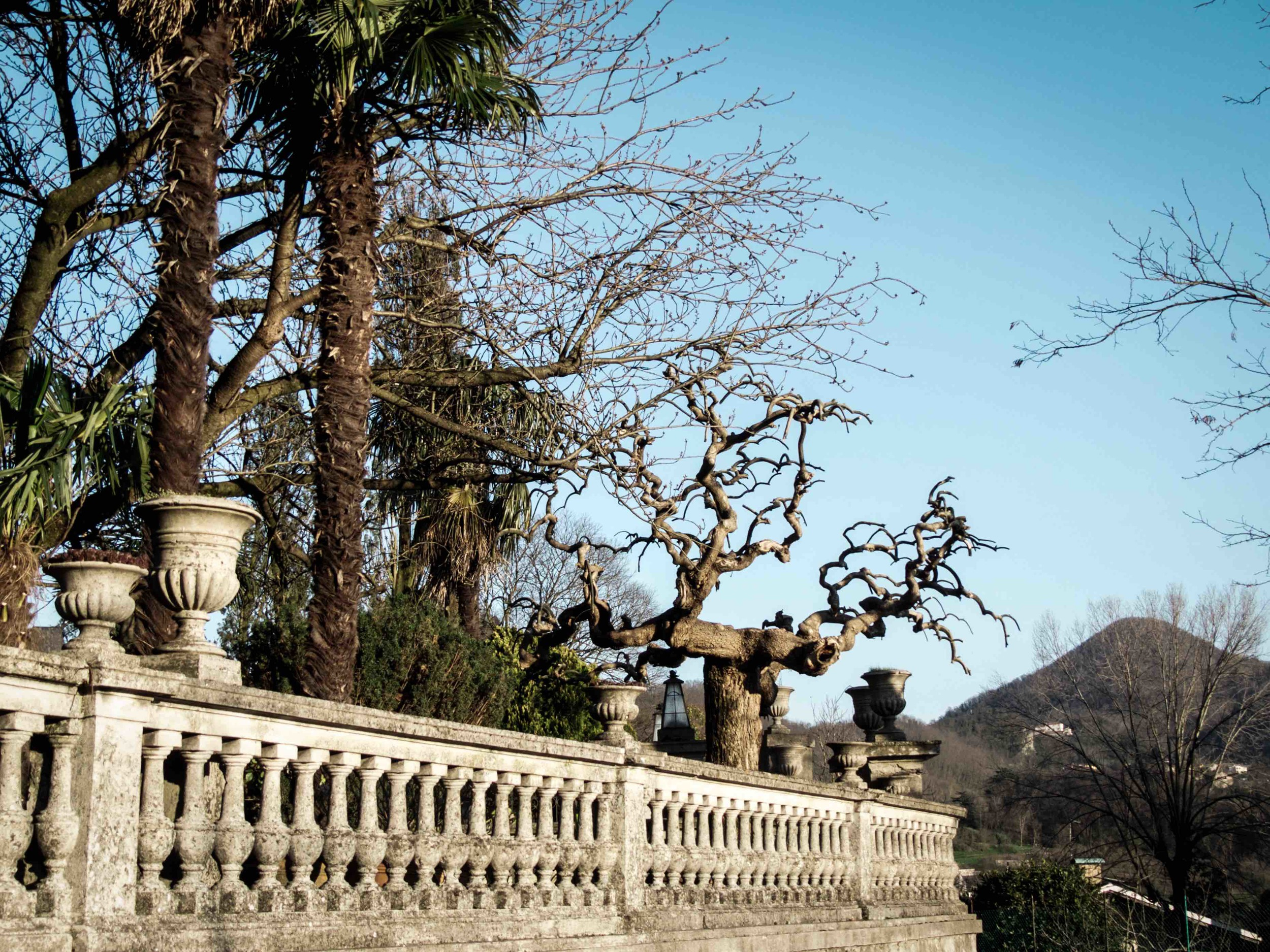 Marco told me that Veneto used to be the wealthiest region of Italy. This is why we see so many old villas around. Can you imagine what it was like a hundred years ago?