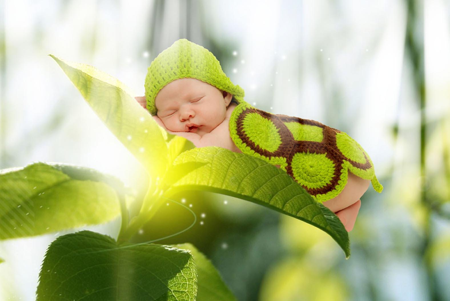 pepper on leaf rays.jpg