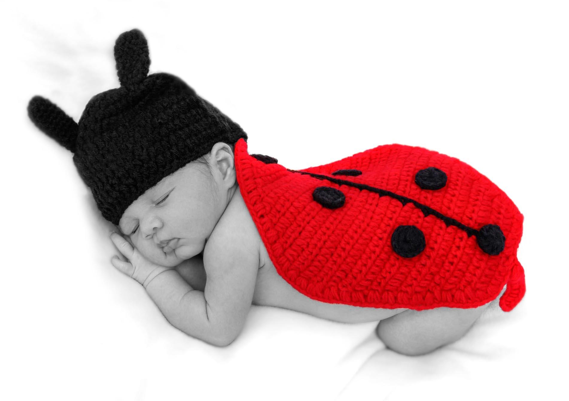 Brianna ladybird 1a.jpg