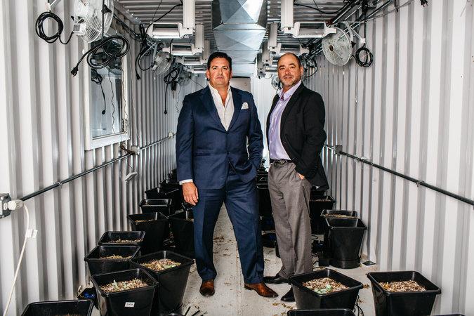 Tripp Keber y Chuck Smith, los fundadores de Dixie Brands. Foto de Ryan David para The New York Times.