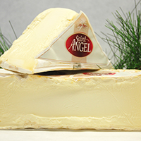 Brie, Saint Angel  Less than 1 Mo. France