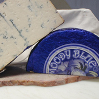 Moody Blue  Cow, 4 Mts. USA-Wisconsin