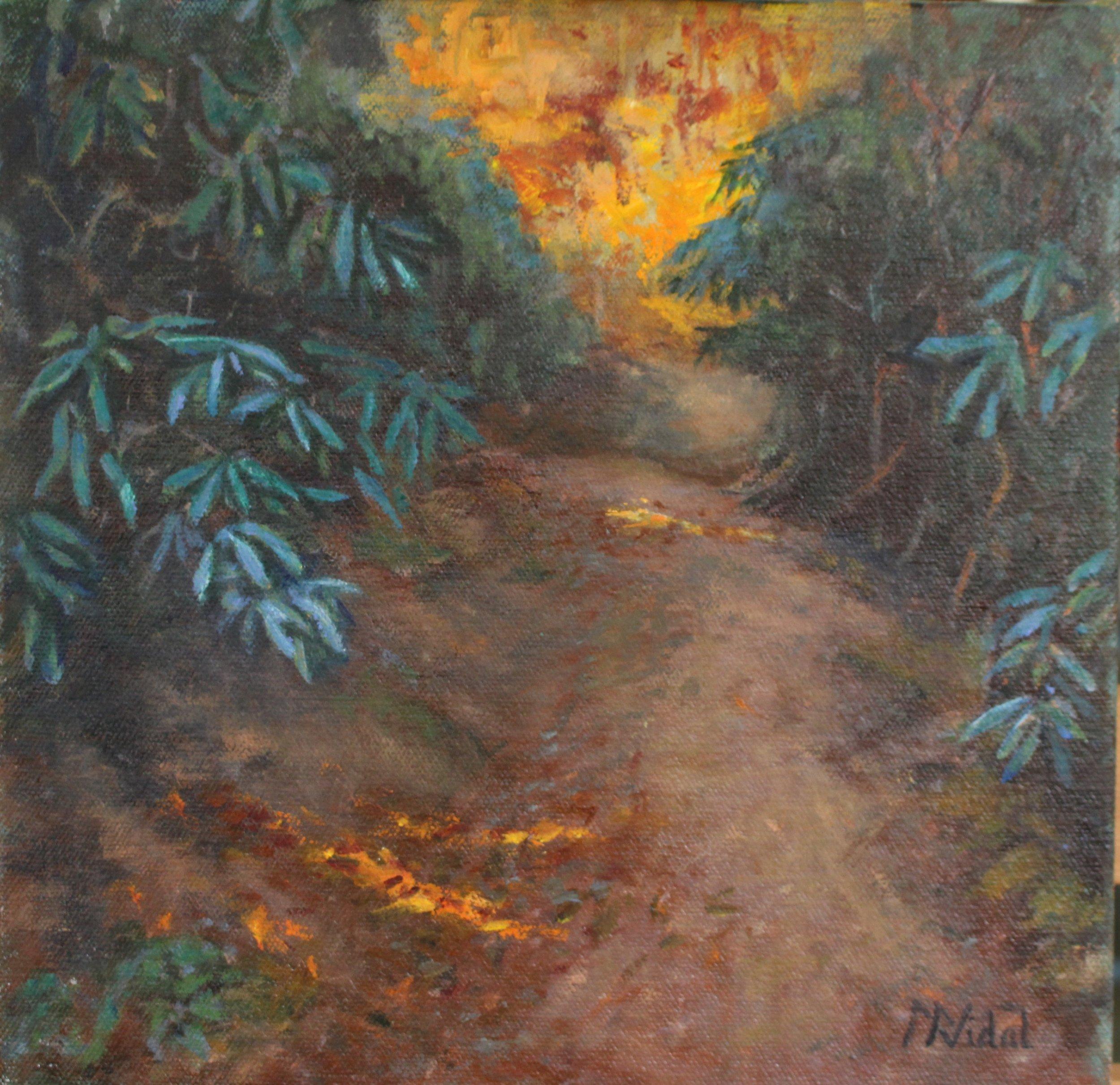 Trails at Brent Creek NC