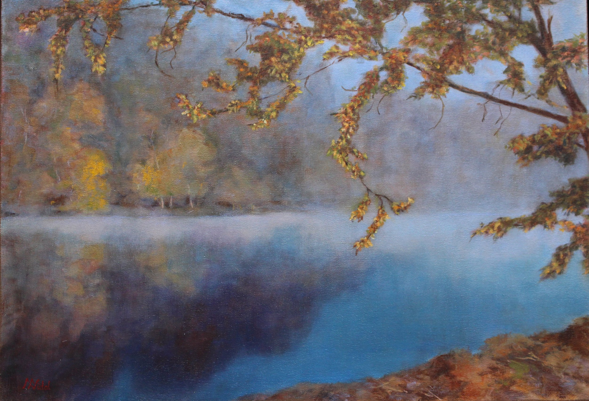 Mist on the French Broad River NC