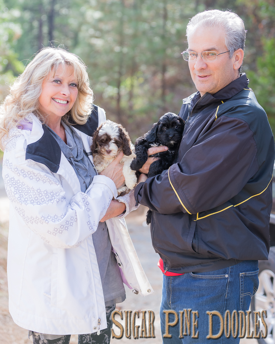 Toby & Makena are adopted and with their wonderful forever home