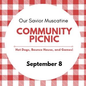 picnic (1).png