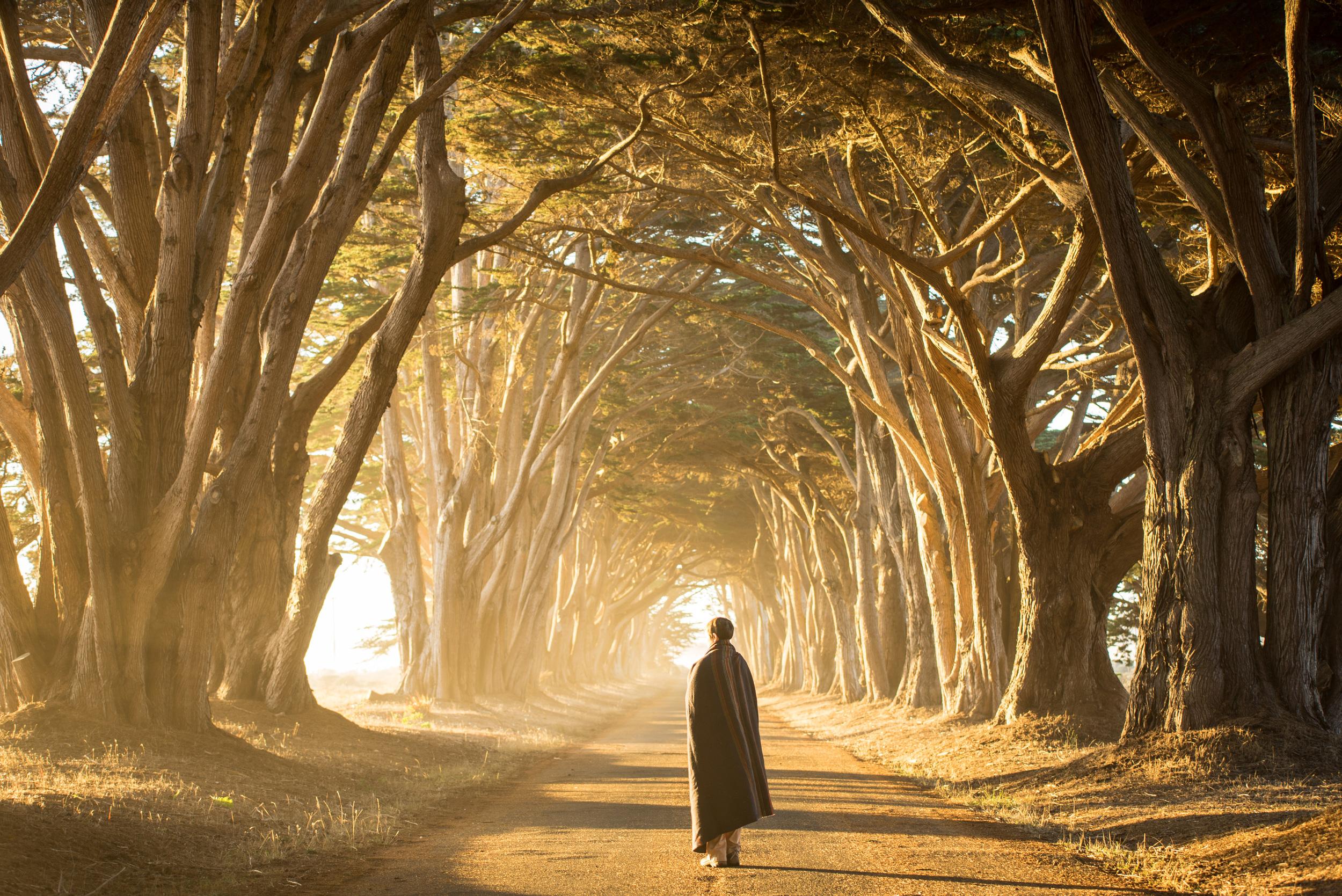 Cypress Grove-7120.jpg