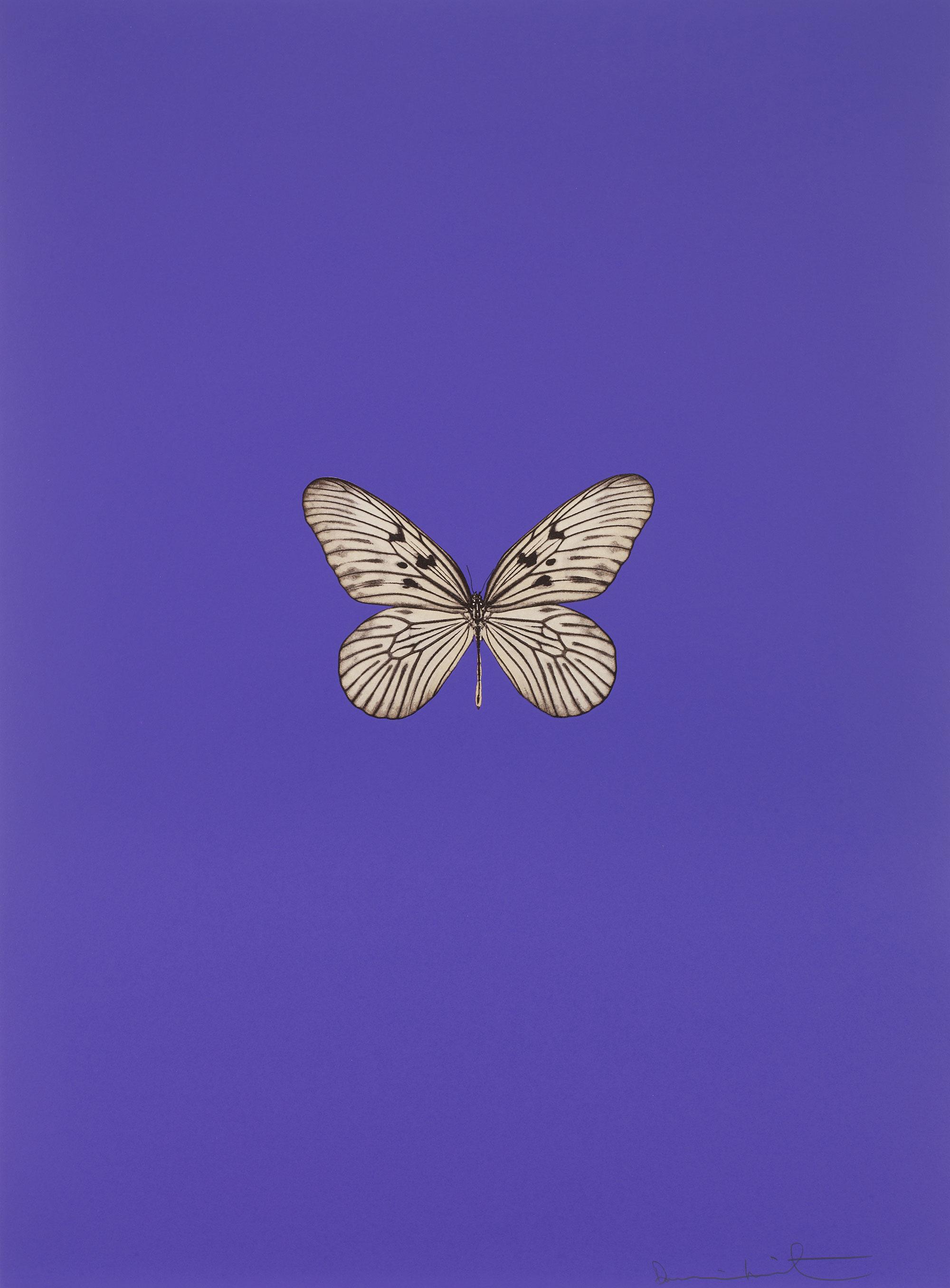 Damien Hirst    It's a Beautiful Day (roxo) •2013 Gravura polimerizada Edição: 55 66.5 x 49 cm
