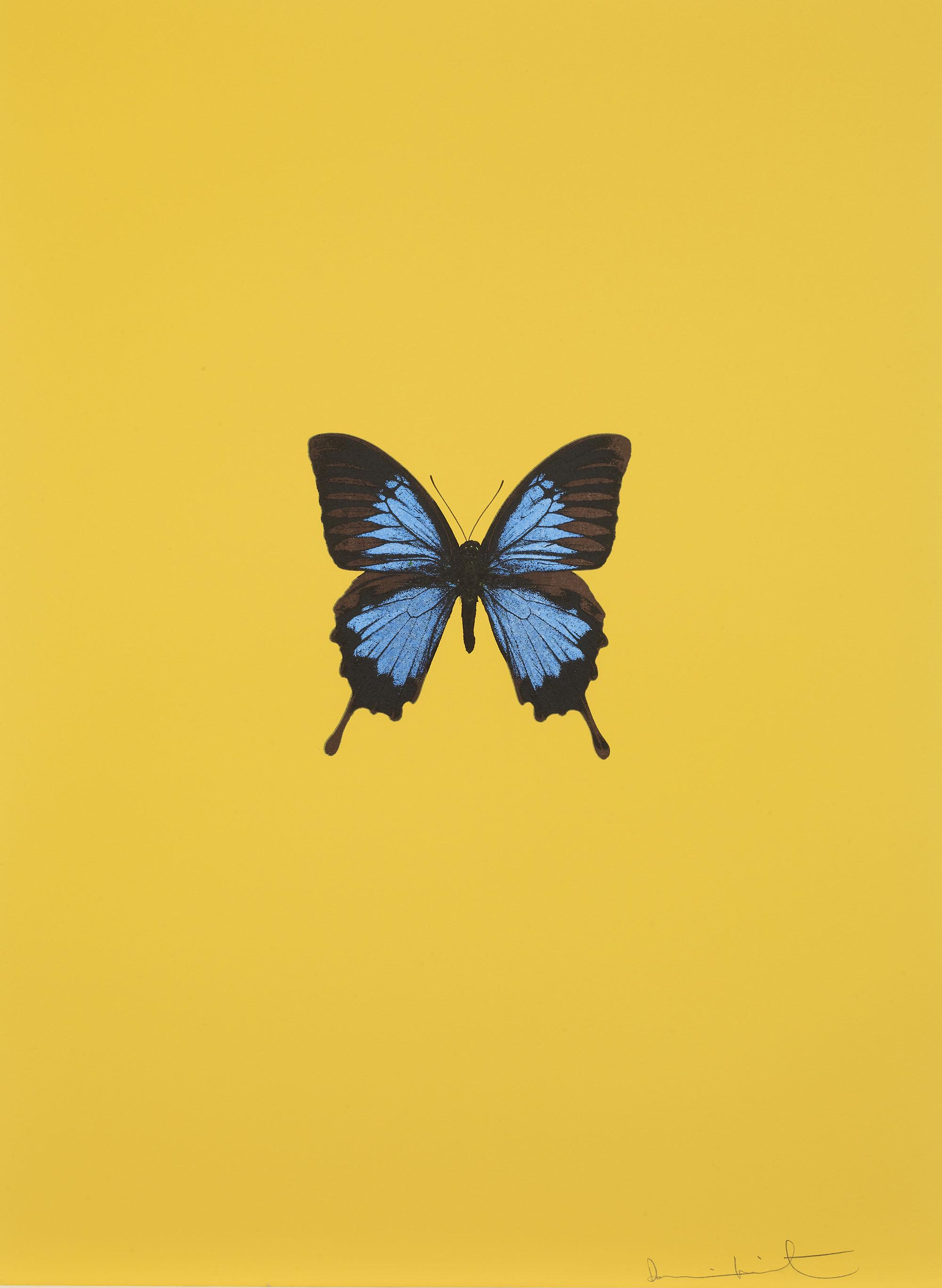 Damien Hirst   It's a Beautiful Day (amarelo) •2013 Gravura polimerizada Edição: 55 66.5 x 49 cm